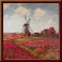 Gov dutch tulip field.png