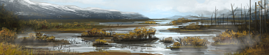 Marsh terrain