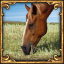 I'll graze my horse here.. And here... icon